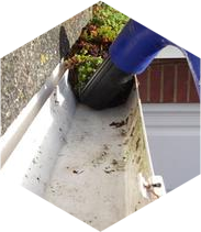 gutter cleaning suwanee ga
